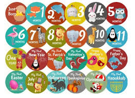 save 48 on 24 baby monthly stickers for year