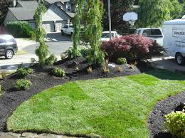 Front Lawn Landscaping Ideas Small Front Yard Landscaping Ideas Rocks Small Front Yard