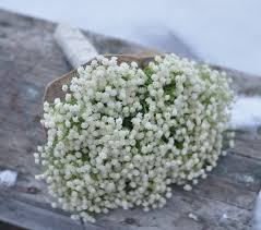 baby breath flowers wedding flower bouquet bridal bouquet made with ivory