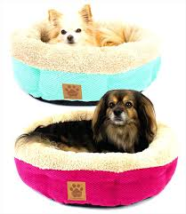 Washable Dog Beds Beds Fancy Dog Beds For Large Dogs In Pet Fancy Pet Beds For