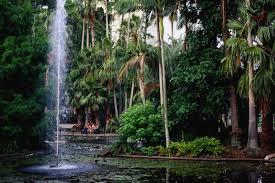 Botanic Gardens Brisbane City The Ten Best Picnic Spots In Brisbane Concrete Playground