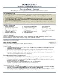 Program Manager Sample Resume by It Program Manager Resume India Virtren Com