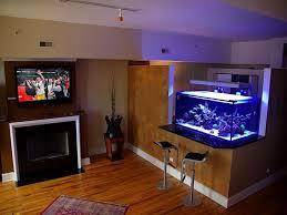 Home Aquarium Decorations 63 Best Aquarium Images On Pinterest Live Fish Tropical Fish