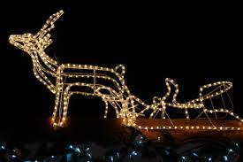 Deer Christmas Lights Free Images Winter Light Night Decor Moose Christmas