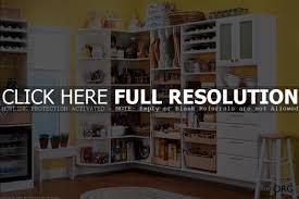 ikea kitchen storage ideas cabinet kitchen storage shelf best kitchen storage racks ideas