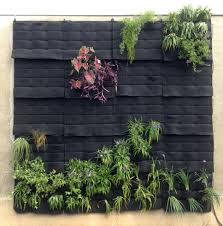 Garden Wall Systems by Living Wall Texas A U0026m U0027s Green Roof Project