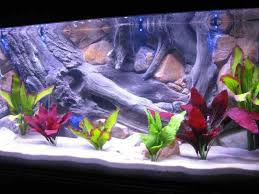 aquarium decoration ideas android apps on play