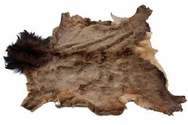 elk rugs roselawnlutheran