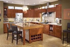 contemporary kitchen charlotte