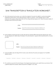 transcription worksheet biology worksheets