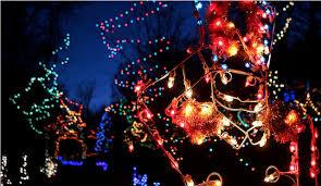 pyramid hill christmas lights 10 cincinnati holiday light displays that dazzle cincinnati parent