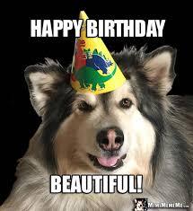 Happy Birthday Meme Dog - birthday dogs are funny canine happy birthday humor dog b day