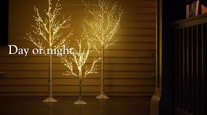 lighted birch tree indoor outdoor birch tree with micro lights sku 65d34 plow