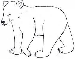 koala bear coloring kids coloring