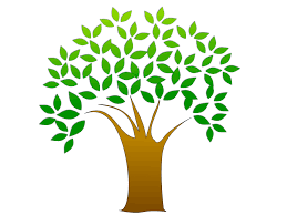 tree clipart free stock photo illustration of a tree with