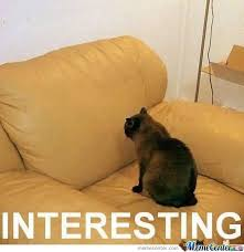 Talking Cat Meme - my cat talking to arm chair by andhy1001 meme center