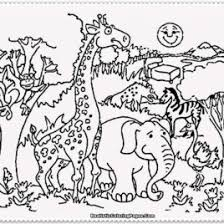 printable zoo animal coloring pages free printable zoo coloring pages for kids coloring pages of