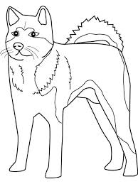 dog color pages printable husky coloring sheets 17760