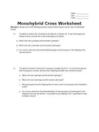 monohybrid cross worksheet doc zygosity dominance genetics