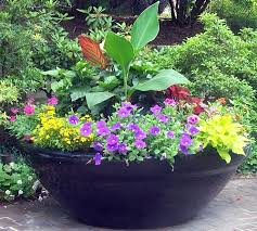 Potted Garden Ideas Container Garden Design Container Garden Ideas With Bewitching