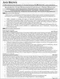 sample consultant resume