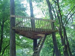 and authentic tree house sans unnecessary decor perfectly