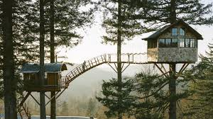 three house washington builds treehouse with its own skatebowl