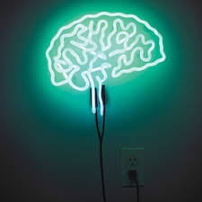 the brain does not light up procrustean neuroscience