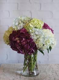 Wedding Flowers Omaha Teleflora Edgesuite Net Images Products Hw0 757405 Jpg