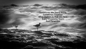 Together Alone Meme - stand alone meme alone best of the funny meme