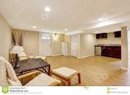 design trendy mother in law suite basement conversion basement