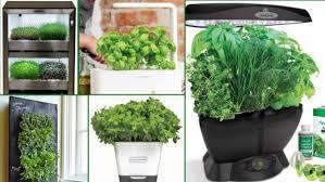 Indoor Herbal Garden Best Indoor Herb Garden Kits Even Die Hard Plant Killers Can U0027t