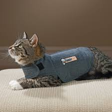 thundershirt for cats cat anxiety and stress drsfostersmith com