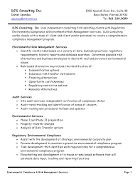 professional resume service reviews djs consulting daniel spandau cv and services