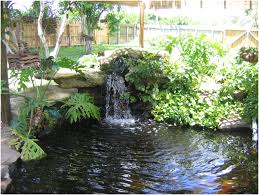 backyards gorgeous backyard pond ideas garden pond design ideas
