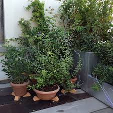 amenagement terrasse paris aménagement d u0027une terrasse avec jardinières