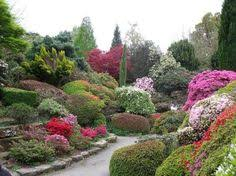 20 blooming rock garden design ideas and backyard landscaping tips