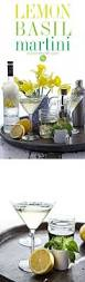 vodka martini best 25 vodka martini ideas on pinterest cocktail recipes mix
