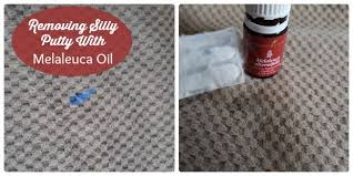 How To Get Silly Putty Out Of Carpet Removing Silly Putty From Fabric Melaleuca Oil Vs Lemon Oil