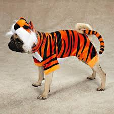 Extra Large Dog Halloween Costumes Extra Large Dog Halloween Costumes Lookup Beforebuying
