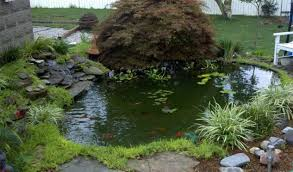 13 diy awesome natural backyard pond ideas for all budgets top