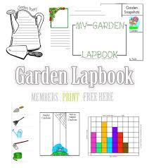 seed to plant coloring u0026 worksheet