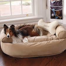 Sofa Bed For Dogs by 203 Best Dog Bed Images On Pinterest Dog Stuff Diy Dog Bed And