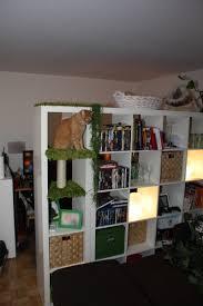 furniture good looking image of light oak wood bookshelf ikea