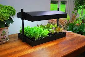 where to buy indoor grow lights led grow lights for indoor gardening