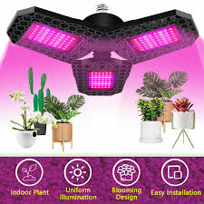 what is the best lighting for growing indoor spectrum 144led grow light plant growing l for indoor plants hydroponics