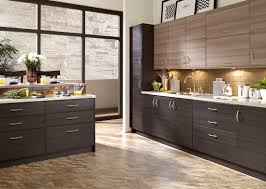 Elegant Kitchen Cabinets Las Vegas 14 Best Kitchen Cabinets Images On Pinterest Cabinets To Go