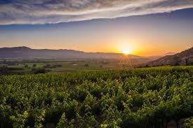 visit napa valley wineries hotels events u0026 restaurants