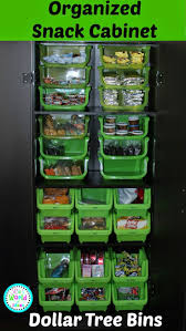Organizing Kitchen Pantry Ideas 25 Best Dollar Tree Organization Ideas On Pinterest Dollar Tree
