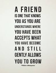 10 best friendship quotes images on best friend quotes
